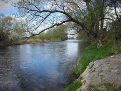 Moldau 1