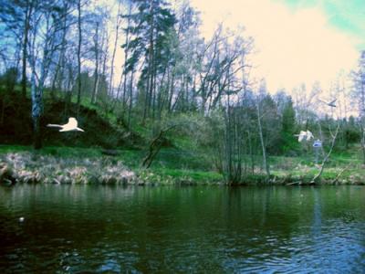 Moldau 5